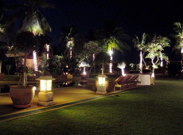 Nighttime in the backyard